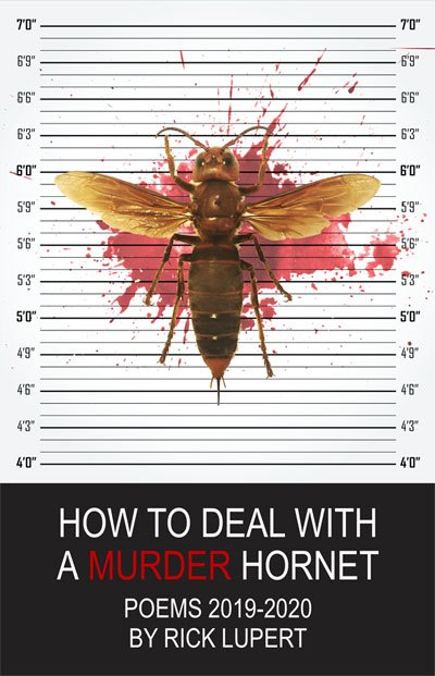 How to Deal With a Murder Hornet by Rick Lupert